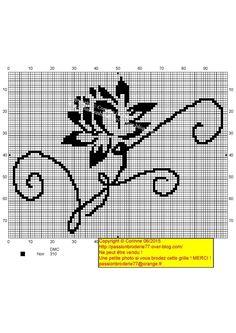 Lotus contours