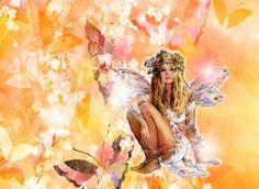 Le farfalle fiorite, una storia molto originale e fantasiosa! #farfalle #drawing #graphic #illustrazioni #fiabe #fairy #fantasy #fatina