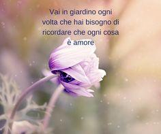 #natura #flowers