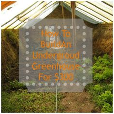 Do you like gardening, but tend to go into a winter depression because you can't enjoy those fresh fruits and veggies during those few cold months of the year?  An underground greenhouse, or …