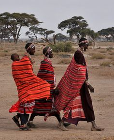 Women of Maasai Mara Sculpture Projects, African Masks, People Around The World, World Cultures, African Fashion, Christianity, My Photos, Maria Teresa, Art Drawings