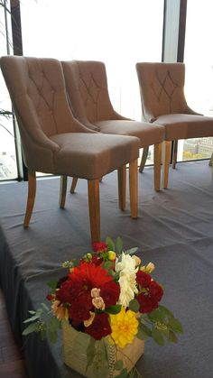 Tufted linen chairs are perfect for dinner seating and panel discussions. State Room, Lounge Furniture, Event Ideas, Corporate Events, Tent, Dining Chairs, Stage, Dinner, Interior Design