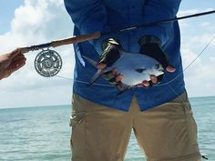 "Photo: ""Accidental"" Permit in Belize - Orvis News"