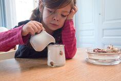 Le journal de Liv  Émy à travers la pédagogie Montessori et d'autres courants.