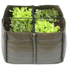 Godefroy de Virieu Bacsquare 4 Pocket Planter 140L ($84) ❤ liked on Polyvore featuring home, outdoors, outdoor decor, fillers, plants, brown, outdoor garden decor, garden decor, lightweight planters and garden planters