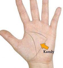 Čtení z ruky - Představení čar, znak Kandy - Vestirna.com Online Kandi, Body, Snake, Angel, Life, Ideas, Palmistry, Therapy, Astrology