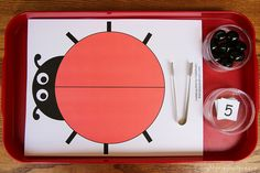 Montessori-Inspired Ladybug Activities Using Free Printables