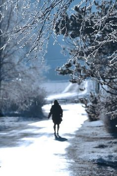 Winter is here. I do enjoy the crisp days and the beauty fresh snow brings, at least for the first few weeks . I Love Winter, Winter Colors, Winter White, Winter Cabin, Winter Walk, Cosy Winter, Winter Fairy, Months In A Year, Winter Christmas