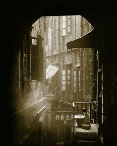 her study, Hong Kong 1963