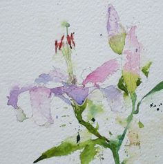Lilies, flowers, pink, green, watercolor, painting, fine art, Lisa Livoni, Napa Valley artist, colorist