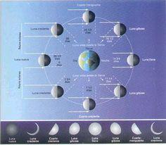 Fases-lunares-002
