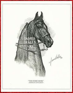 """#American saddlebred #horse art """"the stake #mare""""  by james walls,  View more on the LINK: http://www.zeppy.io/product/gb/2/370294579202/"""
