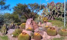 Botanico Jardin