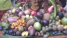 photo taken at australian tropical foods nursery QLD Garden Fun, Home And Garden, Permaculture, Amazing Gardens, Tropical, Nursery, Foods, Canning, Fruit