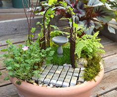 broken pot fairy gardens with dishes of water - Google Search