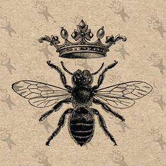 Vintage Honey Bee Queen Wwwpicturessocom