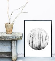 Home Inspiration : Home Decor Ideas: Wall Decor : Nature Decor : DIY Decor   ::: INSTANT DOWNLOAD :::  Visit SlapDash Papery to browse the entire range of Printables!  Forest Print, Forest Art, Woodland, Wall Decor Home Decor Bedroom Decor Black and White Print Landscape Photo, Circle Photography, Wall Art