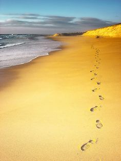 * walk on the beach