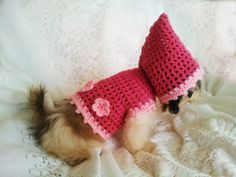 Digital Pattern: Crochet Raspberry Pink Dog Hoodie for female Toy Dogs Size XS, S, M