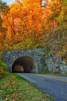 Blue Ridge Parkway - A fabulous drive, especially in the Fall