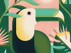Vida Tropical by Pavlov Visuals #Design Popular #Dribbble #shots