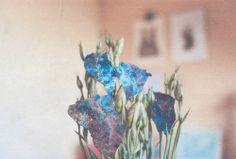 (1) Coups de cœur | Tumblr