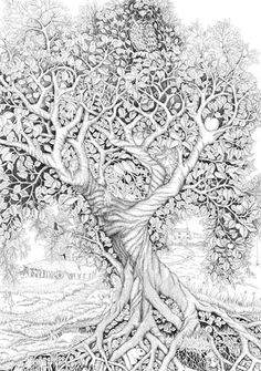 Tree Of Life : Ink line drawing