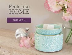 Visit My Web Page for New Zealand Scentsy Orders!