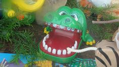 alligator with braces