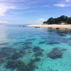 【yuki_cebu】さんのInstagramをピンしています。 《Balikasag near Bohol for scuba diving  ダイビングをするためにバリカサグへ。セブシティよりフェリーで2時間、ボホールへ到着。車で40分ほどでアロナビーチへ。そこにあるダイビングショップのボートで約1時間、バリカサグへ到着!見ての通り、透明度が高くて、ダイビングも大満足  #cebu #philippine #philippines #balikasag #balikasagisland #bohol #diving #scuba #scubadiving #ダイビング #セブ島 #フィリピン #セブ #ボホール #バリカサグ #南国 #海 #スキューバダイビング》