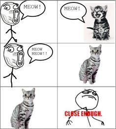 Meow Meow !