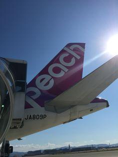 A320-200 #peachaviation #airbus #a320 #kansaiairport Peach Aviation, Kansai Airport, Airplane, Plane, Aircraft, Airplanes, Planes