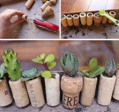 13 lugares criativos para plantar suculentas, sem limites de espaço útil ou materiais disponíveis