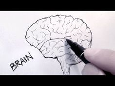 How To Draw A Brain Step By Step For Kids Google Search Bullet