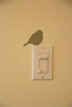 Bird on lightswitch...my bird obsession continues!