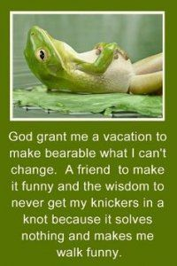 Image result for funny frog pictures with captions