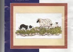 Border Fine Arts Balck Faced Ewe & Collie Anchor Cross Stitch Kit Scotland Opend #BorderFineArts