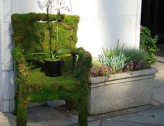 How to create a moss chair for your patio. But I'm wondering where I'd get moss at, does it live in Montana weather? I can't recall seeing any moss hanging around lately. Moss Paint, Growing Greens, Growing Moss, Growing Flowers, Moss Garden, Garden Terrarium, Succulent Planters, Succulents Garden, Hanging Planters