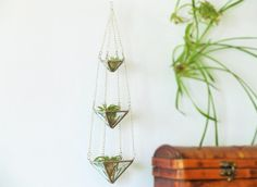 Air Plant Holder Mini 3 Tiered Faceted Stained Glass Hanging Terrarium by SNLCreations on Etsy https://www.etsy.com/listing/191171288/air-plant-holder-mini-3-tiered-faceted