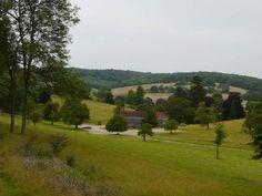 Stonor Park
