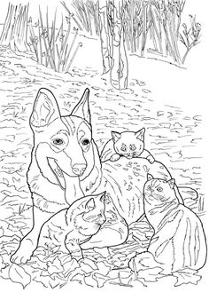 27 Best More Dogs To Color Images Coloring Pages Dog Coloring