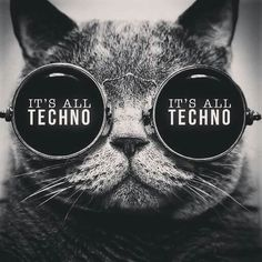 Techno Cat Music Wallpaper, Wallpaper Quotes, Breaking Bad Art, Techno Mix, Rave Music, Cute Cat Breeds, Music Mood, Music Artwork, Partying Hard