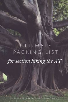 Packing and food lists from a first-time backpacker section hiking the Appalachian Trail.