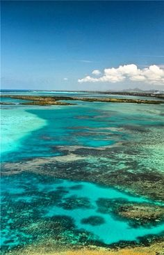 Colorful Lagoon of Mauritius (http://www.facebook.com/BeautyOfMauritius)