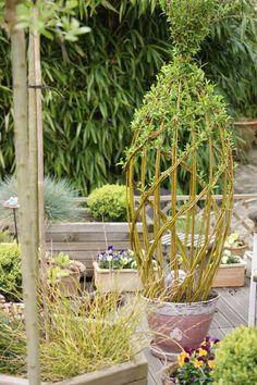 Garden Yard Ideas, Garden Projects, Garden Art, Raised Garden Bed Plans, Building Raised Garden Beds, Willow Garden, Small Flower Gardens, Topiary Trees, Small Backyard Landscaping