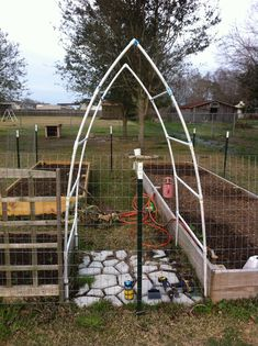 This is a garden trellis we made from PVC. Planted the plants close to edge if the bed and let it climb over trellis. Takes up less space in your bed and you can walk under to pick. Attached pipes to set trellis in on outsider bed to help secure.