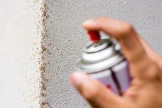 Ako sa zbaviť mravcov v byte, dome, na záhrade aj v pieskovisku   TopByvanie.sk Ant Pest Control, Rat Control, Cockroach Control, Mosquito Control, Termite Control, Pest Control Services, Ant Bites, House Shifting, Bed Bugs