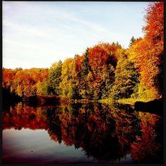 Brandenburg Baa-See l Schöner See