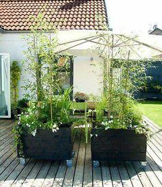 """""""I somras gjorde vi vår uteplats lite grönare och mysigare med dessa… Back Gardens, Small Gardens, Outdoor Gardens, Terrace Garden, Garden Beds, Home And Garden, Garden Cottage, Garden Signs, Exterior"""