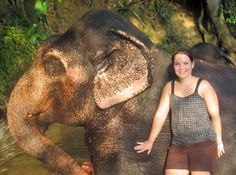 Travel to Sri Lanka. Assist in Elephant Conservation programmes! Click image for more info. BABY ELEPHANTS!